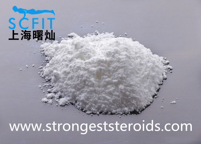 High Purity Estrogen Hormone Raw Powder Estrone CAS 53-16-7 USP Standard